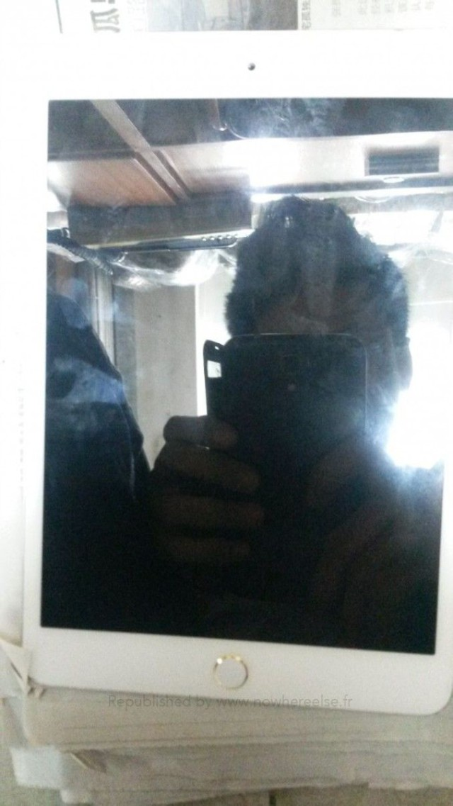 foto-ipad-mini-so-skanerom-touch-id-popalo-v-set