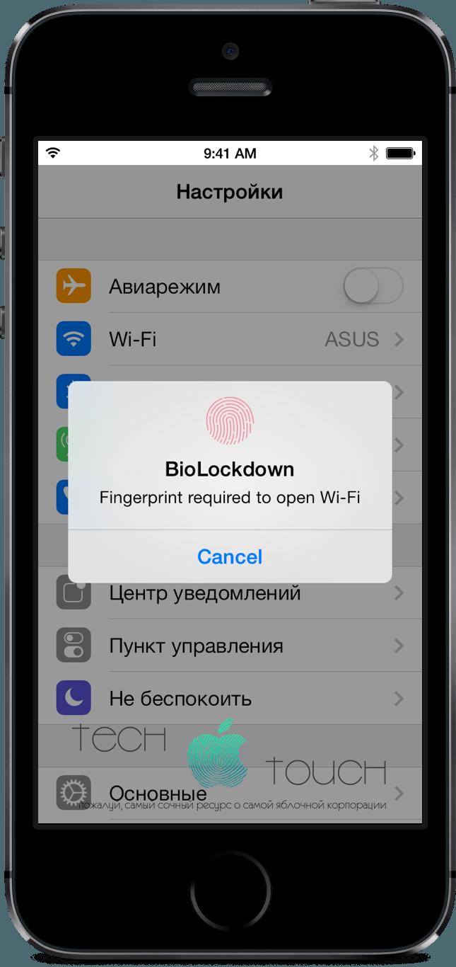 iPhone-5s-biolockdown-tweak-5