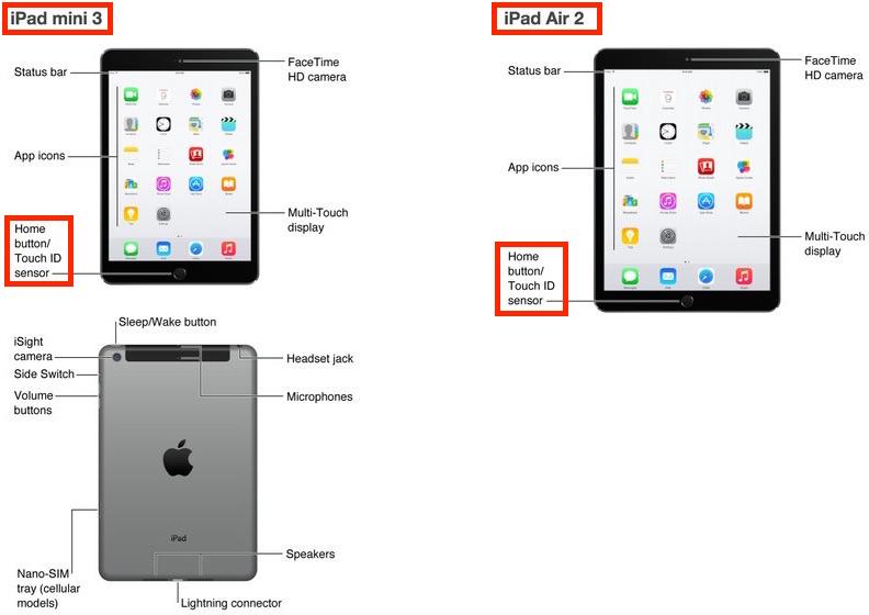 apple-sluchayno-anonsirovala-novyie-ipad-air-2-i-ipad-mini-3-s-touch-id-ranshe-vremeni