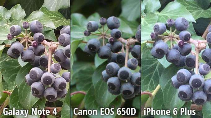 kameru-iphone-6-plus-sravnili-s-galaxy-note-4-i-canon-eos-650d-----