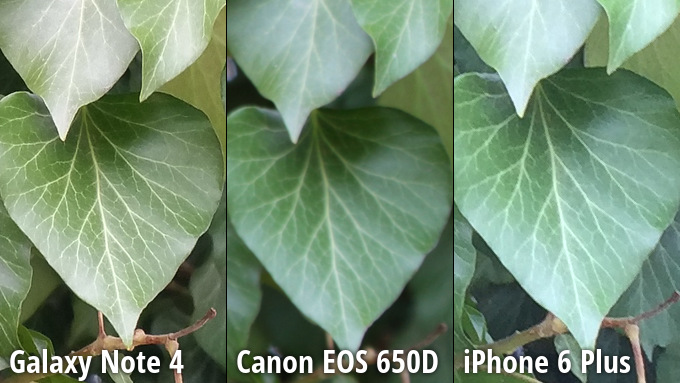 kameru-iphone-6-plus-sravnili-s-galaxy-note-4-i-canon-eos-650d-