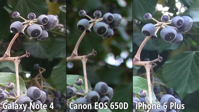kameru-iphone-6-plus-sravnili-s-galaxy-note-4-i-canon-eos-650d--